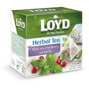 Lloyd Tea mentával és tőzegáfonyával 2g x 20